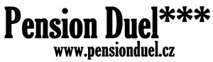 Pension Duel Logo